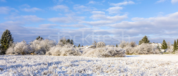 snow covered fields with settlement at the horizon in Munich Stock photo © meinzahn