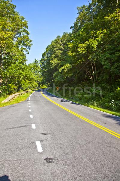 Stock photo: Beautiful scenic country road curves through Shenandoah  Nationa