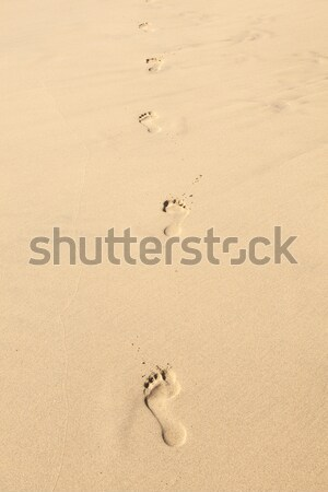 human footsteps at the clean sandy beach Stock photo © meinzahn