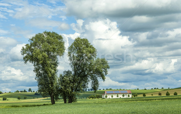 rural landscape in Bavaria with fields and tree Stock photo © meinzahn