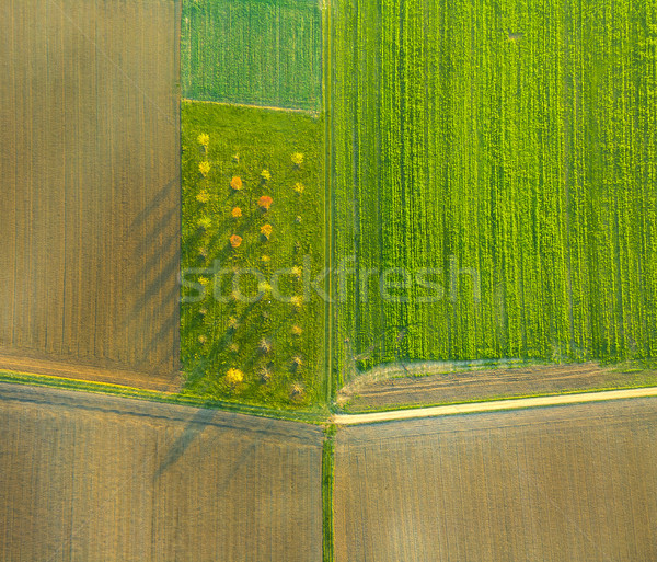 Rural landscape with acre from hot air balloon in Frankfurt Stock photo © meinzahn