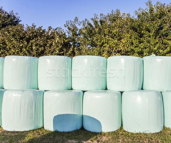 Fardo palha plástico colheita protegido Foto stock © meinzahn