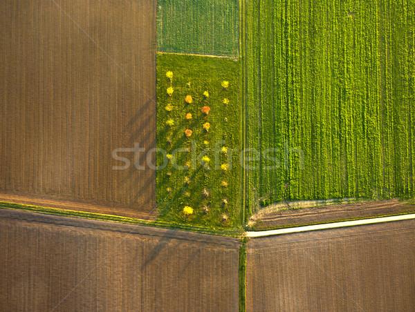 rural landscape with fields Stock photo © meinzahn
