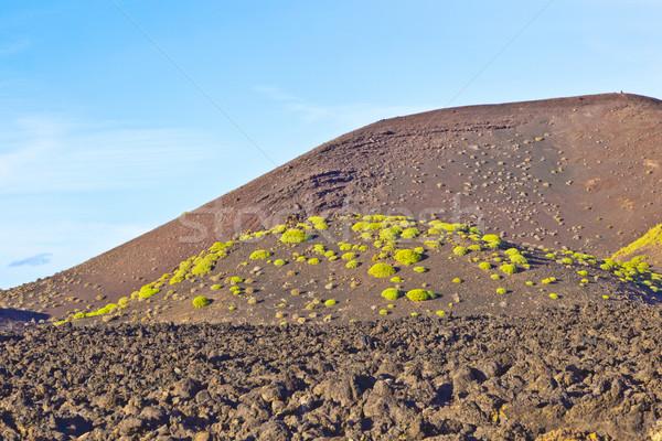 火山 公園 スペイン 空 自然 風景 ストックフォト © meinzahn