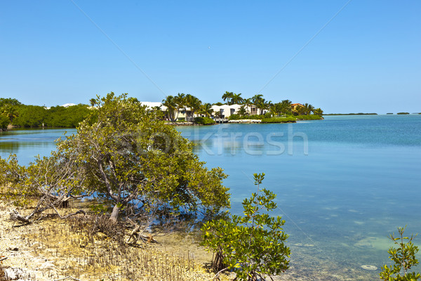 beautiful living area in the Keys  Stock photo © meinzahn