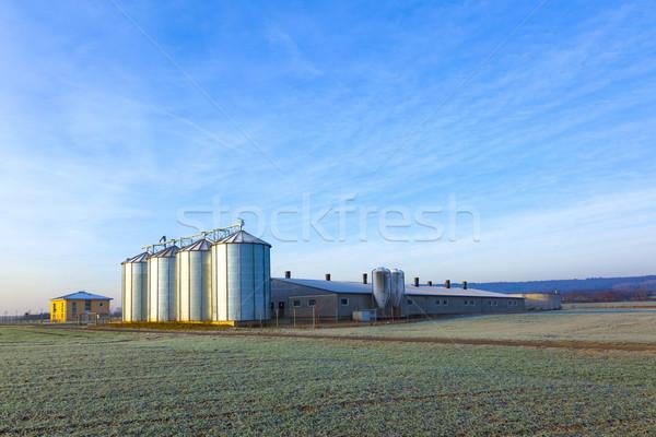 field in harvest with silo Stock photo © meinzahn