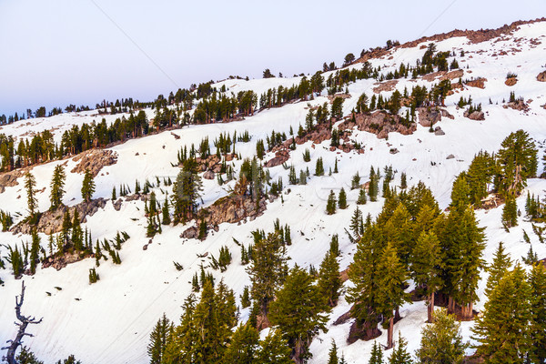 snow on Mount Lassen in the national park Stock photo © meinzahn