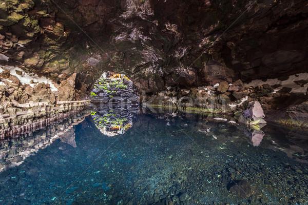 Canárias Espanha caverna água árvore natureza Foto stock © meinzahn