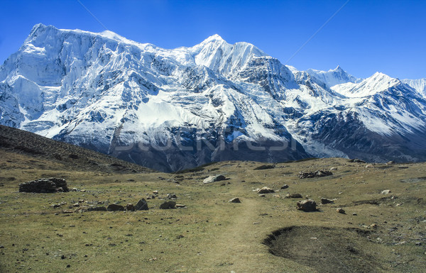 View of north face of Annapurna II and Annapurna IV from Kicho v Stock photo © meinzahn