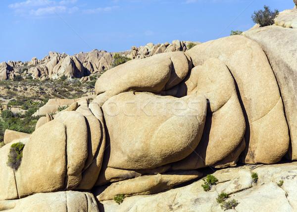 scenic rocks in Joshua Tree National Park  Stock photo © meinzahn