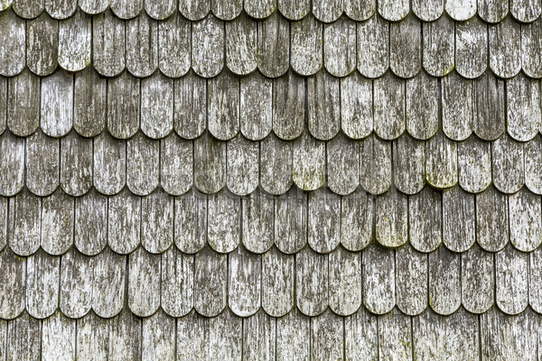 old wooden shingles on the roof  Stock photo © meinzahn