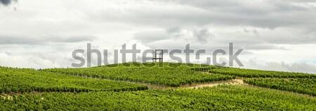 Region Niemcy symbol duży krzesło niebo Zdjęcia stock © meinzahn