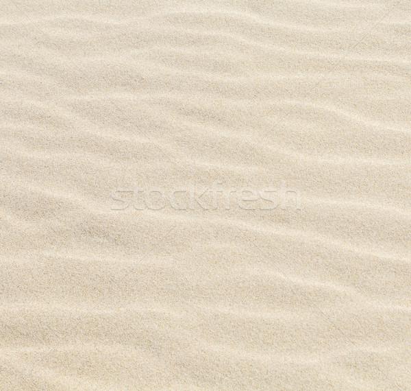Harmonisch patroon zandstrand natuur achtergrond oceaan Stockfoto © meinzahn