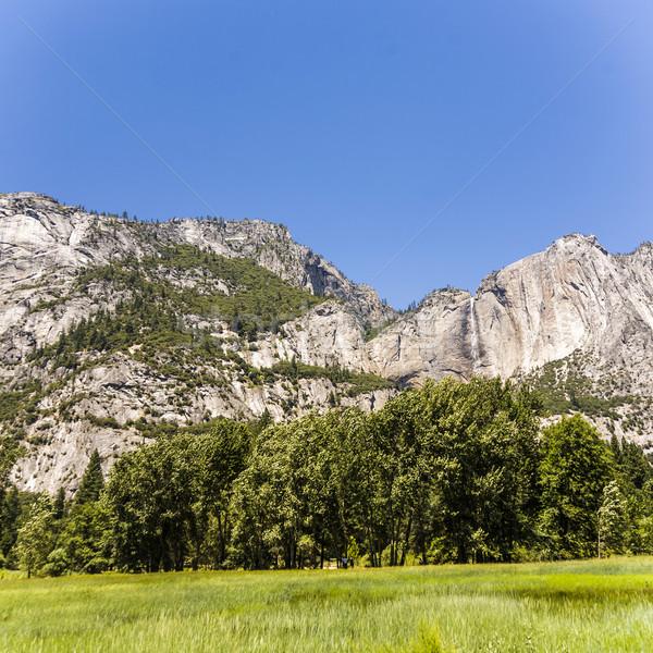 ストックフォト: 風景 · 山 · 草原 · ヨセミテ国立公園 · 美しい · 滝
