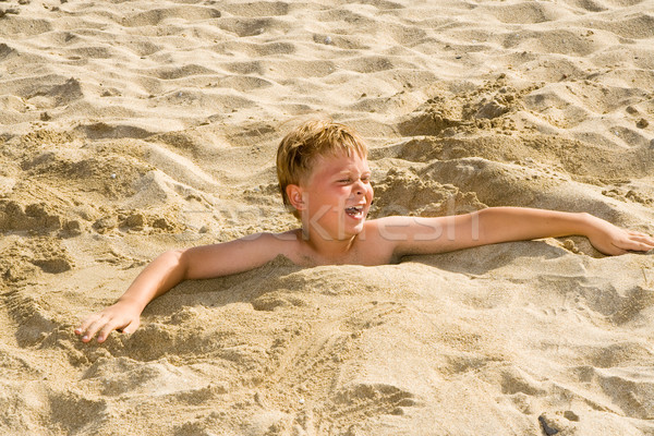 boy is digging oneself into the sandy beach and has a lot of fun Stock photo © meinzahn