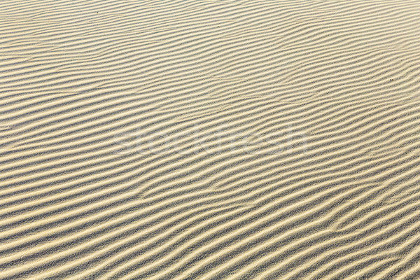 Stock photo:  background of sand ripples at the beach