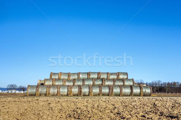 Baal stro veld blauwe hemel zon landschap Stockfoto © meinzahn