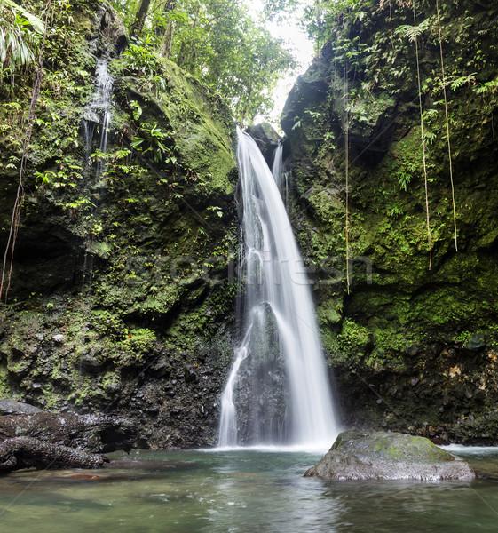 Dzsungel vízesés Dominika sziget hosszú expozíció idő Stock fotó © meinzahn