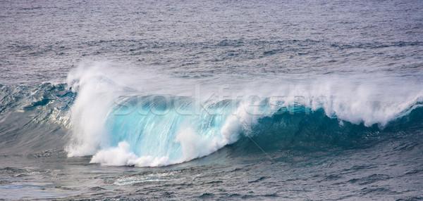 Dev dalgalar okyanus manzara dağ dalga Stok fotoğraf © meinzahn