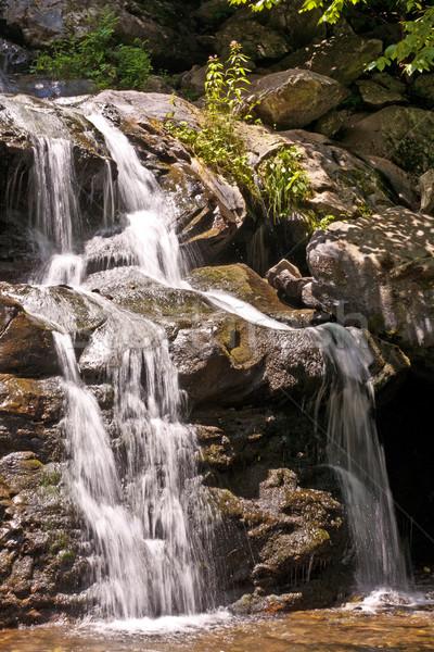 beautiful natural waterfall Stock photo © meinzahn