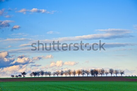 Münih yeni alanları bulutlar bahar Stok fotoğraf © meinzahn