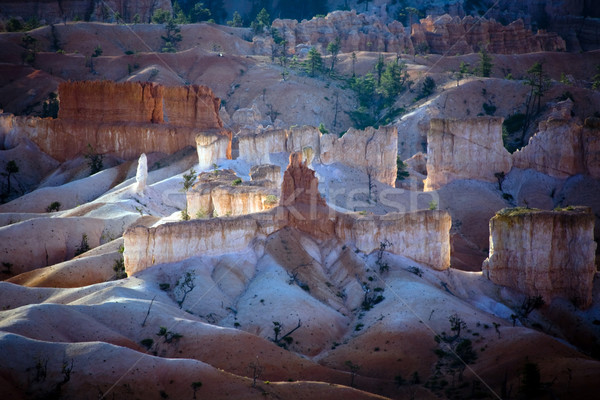 Bryce Canyon hoodoos in the first rays of sun  Stock photo © meinzahn