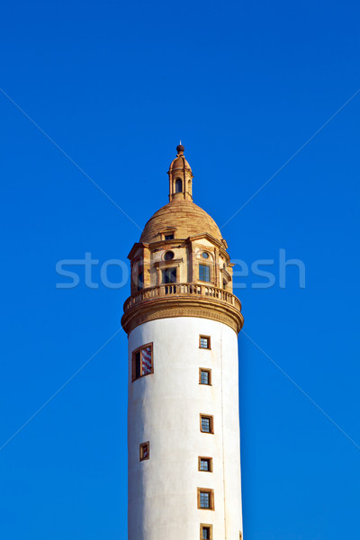 famous medieval Hoechster Schlossturm in Frankfurt Stock photo © meinzahn