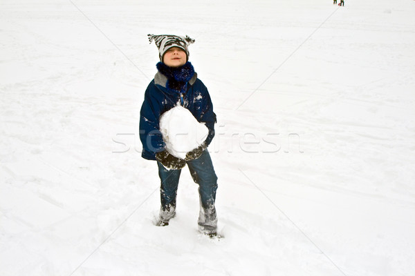 child has a big snowball for the snowman in his hand Stock photo © meinzahn
