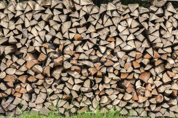 Boglya tűzifa legelő fa természet háttér Stock fotó © meinzahn