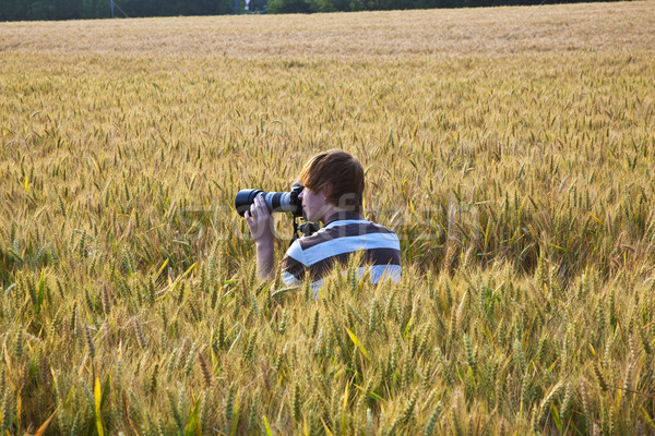 Stock photo: boy taking pictures with tripod of leaves in the corn field