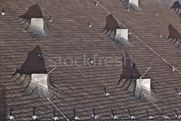 slate roof of a church in the old historic town of Oberursel, Ge Stock photo © meinzahn