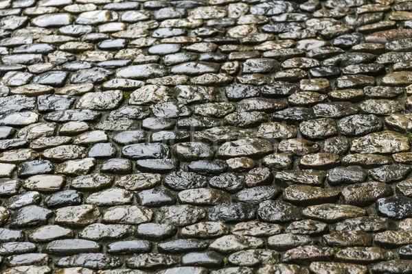 cobble stone road Stock photo © meinzahn
