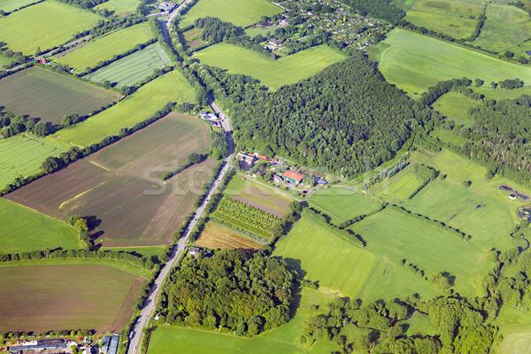 ハンブルク 木材 風景 フィールド ストックフォト © meinzahn