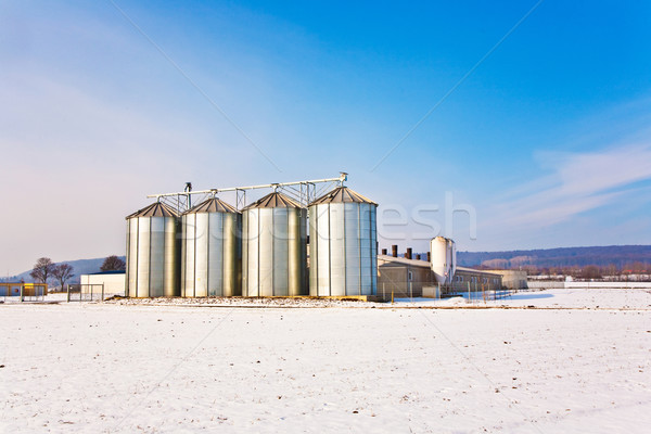 Stockfoto: Landschap · sneeuw · witte · blauwe · hemel · mooie · natuur