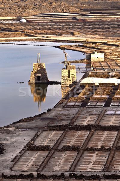 Tuz rafineri manzara sanayi beyaz model Stok fotoğraf © meinzahn