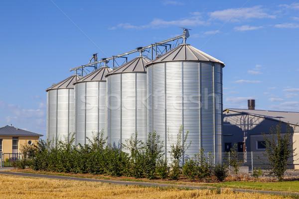 Stock fotó: Négy · ezüst · mező · aratás · kék · ég · felhők