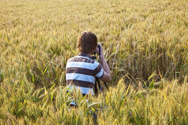Junge Aufnahme Bilder Stativ Blätter Mais Stock foto © meinzahn
