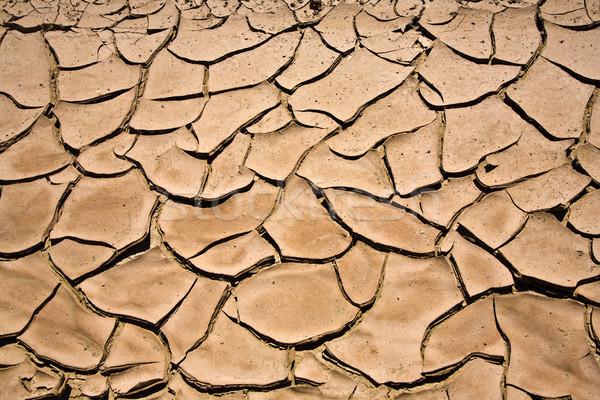 Suszy pęknięty błoto w górę zatoczka pustyni Zdjęcia stock © meinzahn