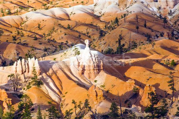 Gyönyörű tájkép kanyon fenséges kő képződmény Stock fotó © meinzahn