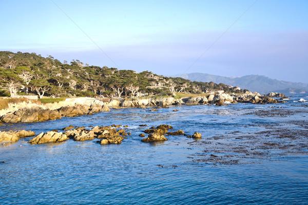 海岸線 ポイント 日没 風光明媚な ビーチ 水 ストックフォト © meinzahn