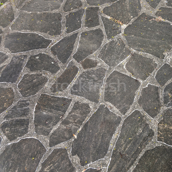 harmonic pattern of slate tiles Stock photo © meinzahn