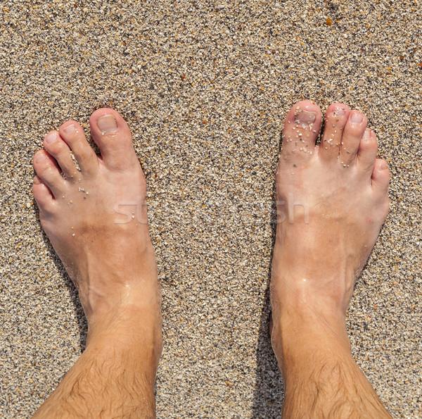 feet of man  Stock photo © meinzahn