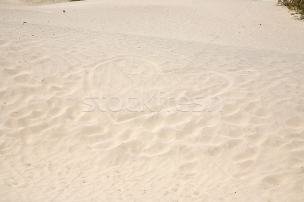 heart in the dunes, Love symbol Stock photo © meinzahn