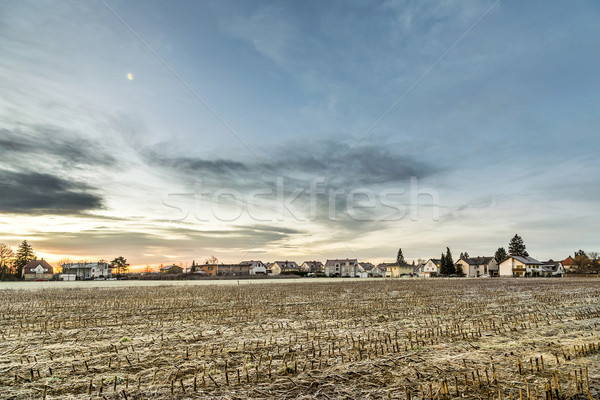 sunrise in a suburb of Munich with Chinook winds  Stock photo © meinzahn