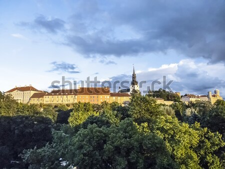 Scenic summer aerial panorama of the Old Town in Tallinn Stock photo © meinzahn