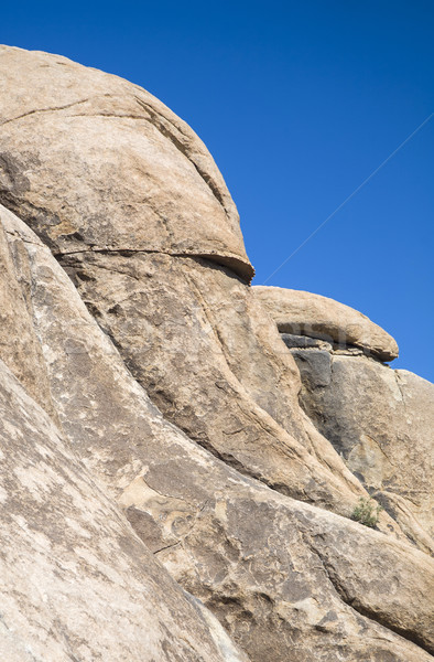 scenic rocks in Joshua Tree National Park  in Hidden valley Stock photo © meinzahn