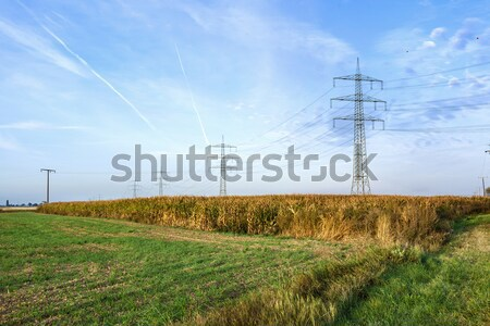 acres with snow in winter iand electrical tower in beautiful lig Stock photo © meinzahn