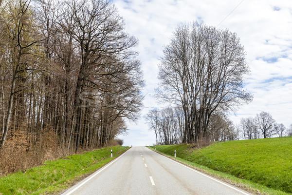 Stockfoto: Klein · straat · weide · bomen · voorjaar · boom