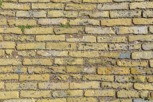 Stock photo: footpath made of yellow bricks
