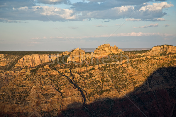 Grand Canyon National Park view in the morning light  Stock photo © meinzahn